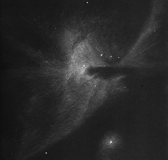 Un bellissimo disegno della nebulosa di Orione osservata da Giorgio Bonacorsi attraverso un telescopio Newton da 130 mm di diametro e 100 ingrandimenti, da un cielo molto scuro.